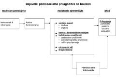 Slika 1: Model psihosocialnega prilagajanja bolnikov z rakom (Kornblith AB in sod., 1995)